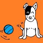 YCM Imagery profile image.