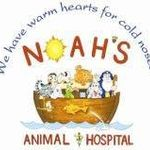 Noah's Pet Hotel and Spa west profile image.