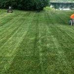 garpo landscaping profile image.