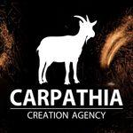 Carpathia Creation Agency profile image.