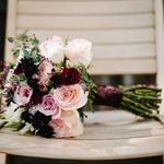 Belleview Weddings & Events profile image.