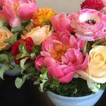 Wildflower, Artisan Flowers, Weddings & Events profile image.