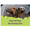 Home from Home Dog Grooming Salon profile image