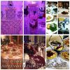 M&V Catering Impressions  profile image