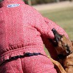 Dog Squad U profile image.