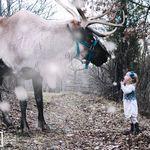 Erica Danile Photography profile image.