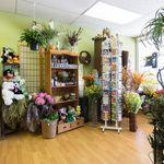 North Port Natural Florist profile image.