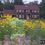 Emil Yedowitz Landscaping and Irrigation Solutions profile image.
