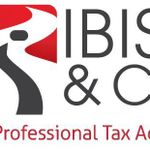 IBISS & CO LIMITED profile image.