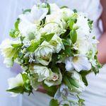 The Flowerfall profile image.