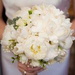 Floressence profile image.