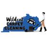 Wildcat Clean Team profile image