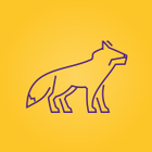 SQUARE HEADED FOX