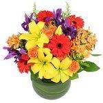 Brandon House of Flowers profile image.