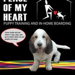 Peace of My Heart, Puppy Training & In-home Boarding profile image.