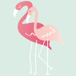 Duo Flamingos profile image.