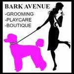 Bark Avenue profile image.
