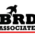 BRD Associates profile image.