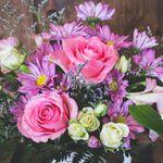 Rosé Florist & Wine Room profile image.