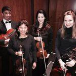 The Gainesville String Quartet profile image.