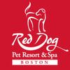Boston Red Dog profile image