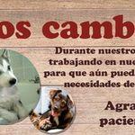Ganado Feed - Alimento/Pastura/Articulos Charros profile image.