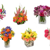 Flowers at Daisie's Wedding Designs profile image