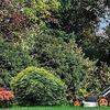 Jacksons Gardening Services Carlisle profile image