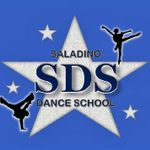 Saladino Productions, Inc. profile image.