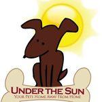 Under the Sun Doggie Daycare & Private Dog Park profile image.