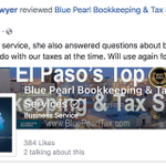 Blue Pearl Bookkeeping & Tax Services profile image.