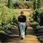 Garden Tidy profile image.