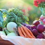 True You Nutrition profile image.