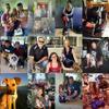 Pitbulls and Friends Dog Rescue profile image