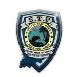 Special Task Force Protection Agency, LLC profile image.
