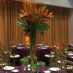 Juliet Tan Floral Design profile image.