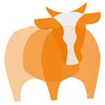Moola Marketing Limited profile image.