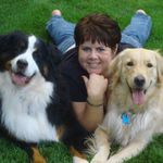 Paws n Think Dog Training, LLC profile image.