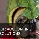 Melon Accountants profile image.
