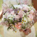 Rebecca Dawe Photography Ltd profile image.