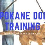 Valor K9 Academy - Spokane profile image.