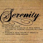 Serenity Cleaning profile image.