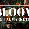 BLOOM Digital Marketing profile image