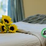 Viridian Massage profile image.