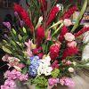 Burlingame LaGuna Florist profile image