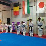 Sakura karate academy profile image.
