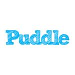 Puddle Digital profile image.