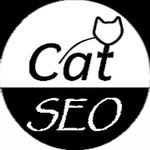 CAT SEO LTD profile image.