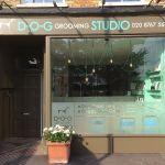 D-O-G Grooming Studio profile image.