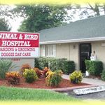 Animal and Bird Hospital of Clearwater profile image.